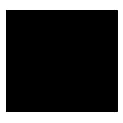 Icon anatomische Strukturen